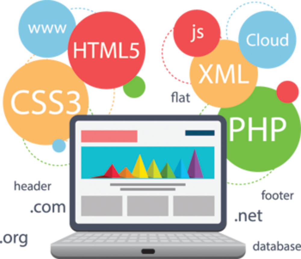 custom web development in islamabad pakistan